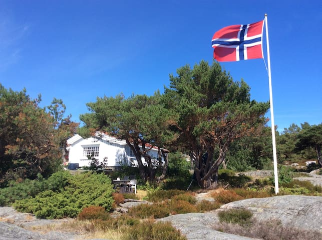 Lovely summer cabin in Havsøysundet summer 2018