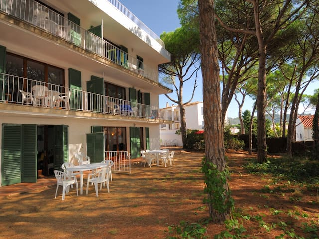 Practical apartment very close to area to Platgeta in Calella.