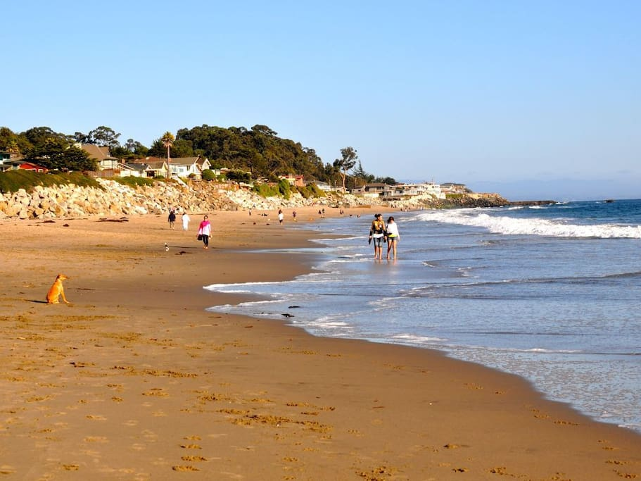Beach access is at end of our block, 26th Avenue - a one-mile stretch of pristine sand!