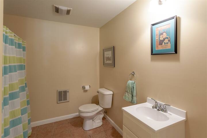 Lower level bathroom with shower