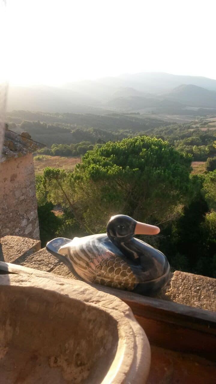 La casa delle anatre - the house of ducks