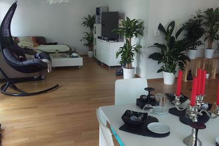 charming room in a new appartment - Alpnach Dorf - Apartment - 2