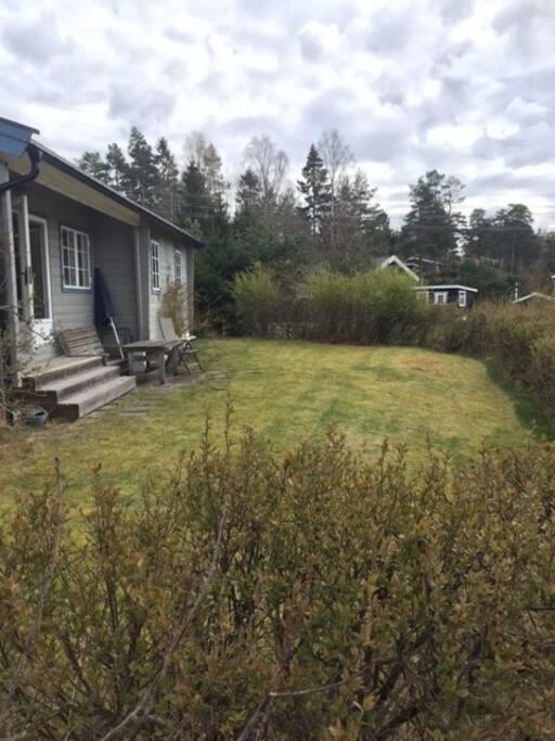 Bilde av hagen og gressplen