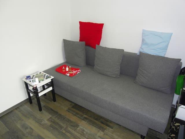 Zimmer im Herzen Freibergs - Freiberg - Lejlighed