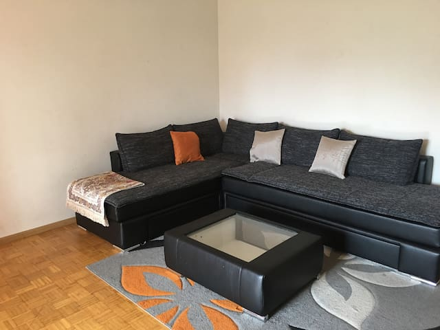 Appartement calme a onex
