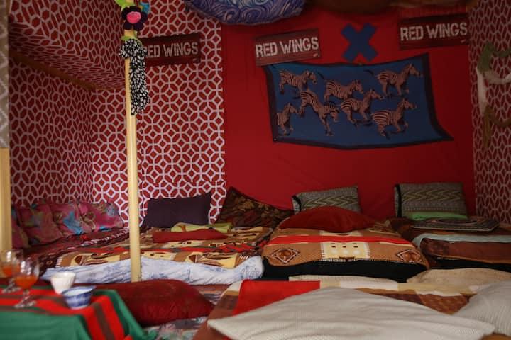 """A Unique Room Perfect for """"Barkada"""" FREE WIFI"""