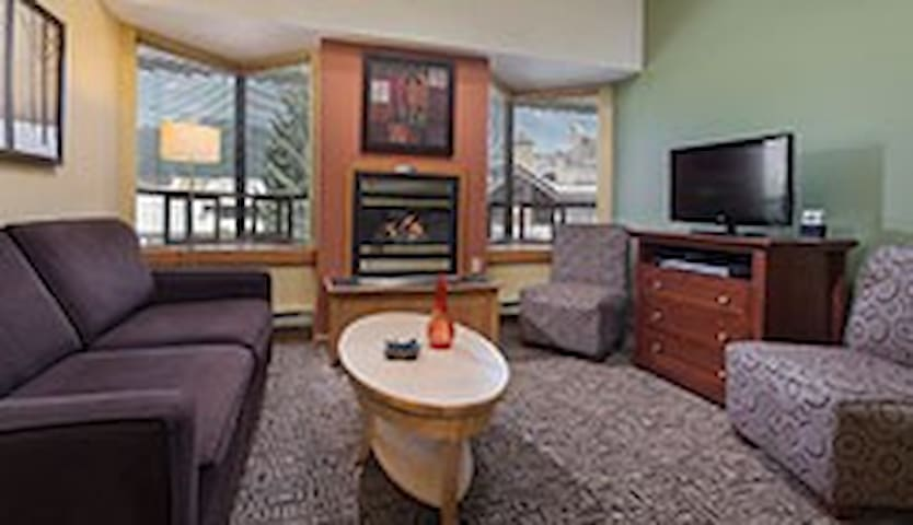 Living room, pull-out couch, gas fireplace