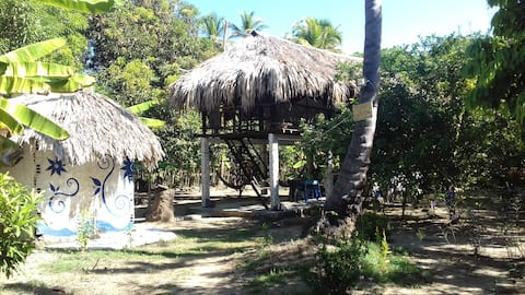 "Cabaña Tropical ""Papalotl"". Experiencia Natural"