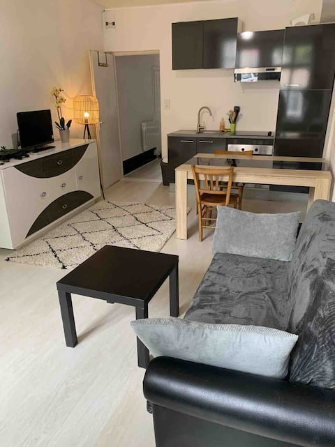 Mooi appartement in Pesmes