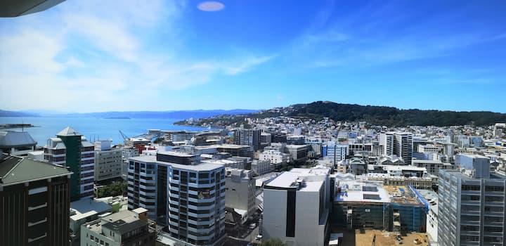 Studio Apt 180 Degree Views Over Wellington City