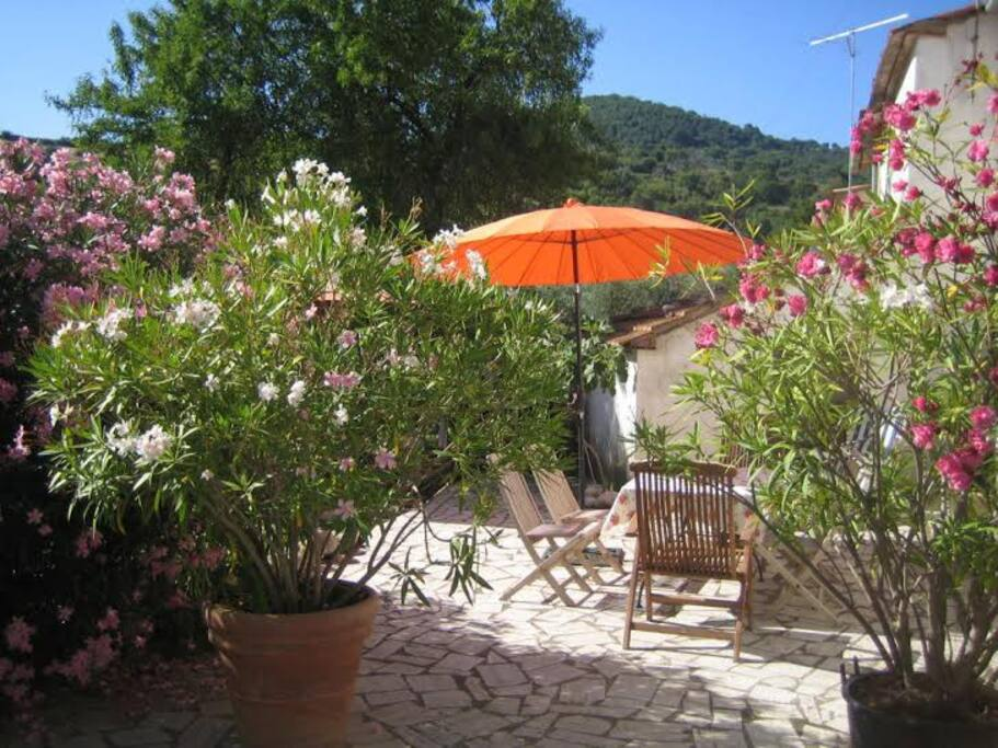 Häuschen Terrasse Toskana Maremma Casas en alquiler en