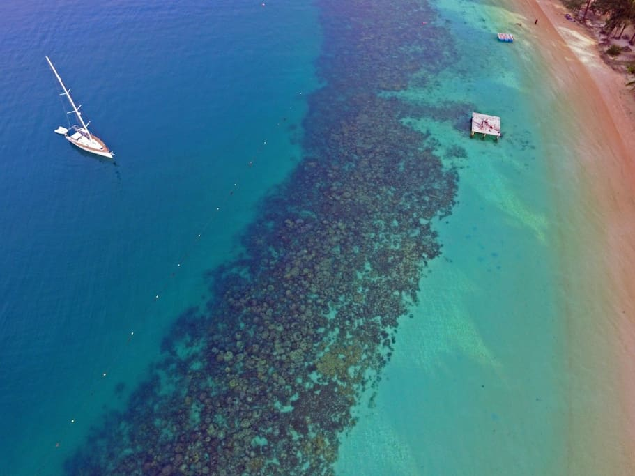 great corals