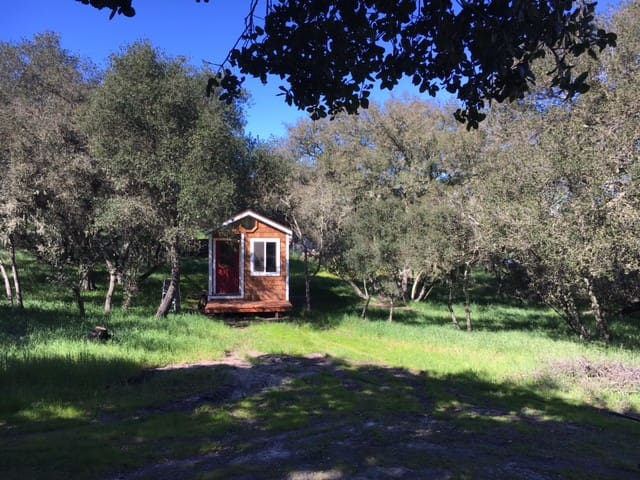 Nanny's House Tiny Home - Atascadero - Casa