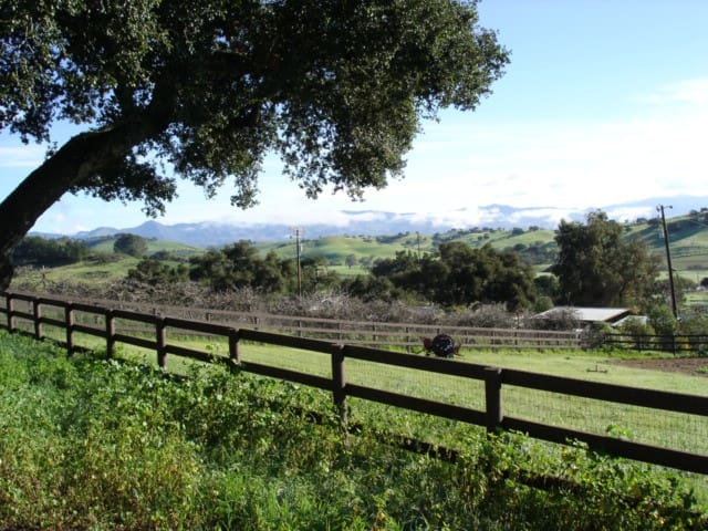 Grand Meadows Friesian Farm - Solvang - Casa