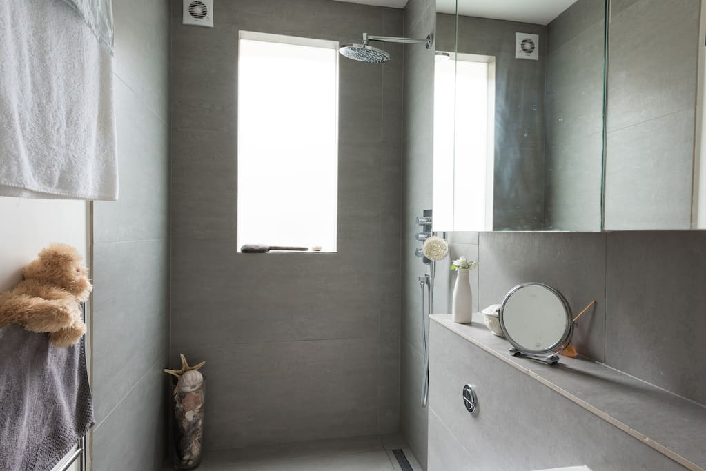 Wetroom with natural daylight