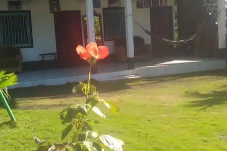Hostal Finca Monserrat 2 - Moyogalpa - Retkeilymaja