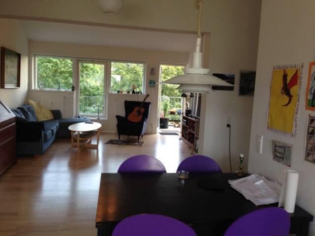 Big light flat, 20 min. to city center public tr - Copenhagen - Apartment