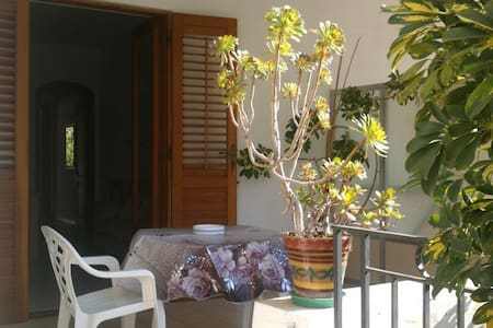 FICUS AB 446 - Canneto - Appartement