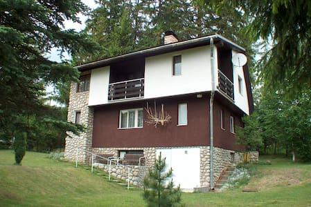 Cottage Juri - Štôla - Dům