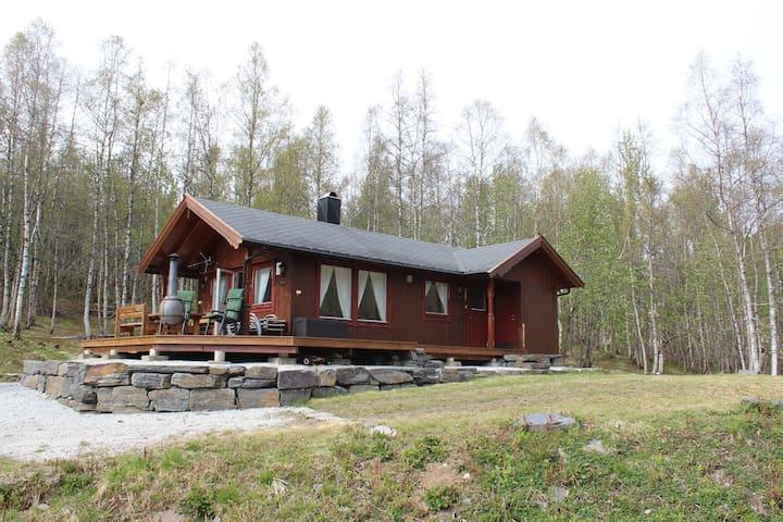 Cabin in Myrkdalen  (Voss/Nærøyfjord/Flåm area)