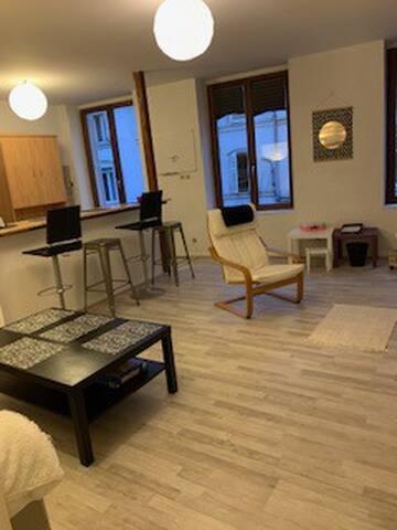 Appartement F3 au coeur de Nancy