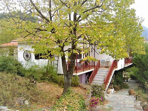 Linden trädkoja med utsikt över trädgård och berg