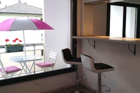 Studio 30 m2 Annecy 300m du lac avec balcon - Appartement
