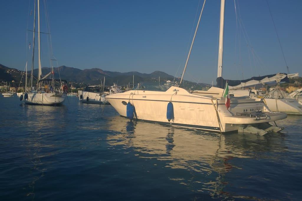 Monterosso motor boat aquajoy 42 barche in affitto a for Noleggio della cabina del parco cittadino