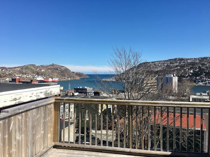 The View! Beautiful 4 BDRM DOWNTOWN Home, welcome.