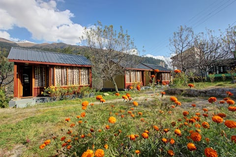 Camping in Manali  with Private Huts and cottage