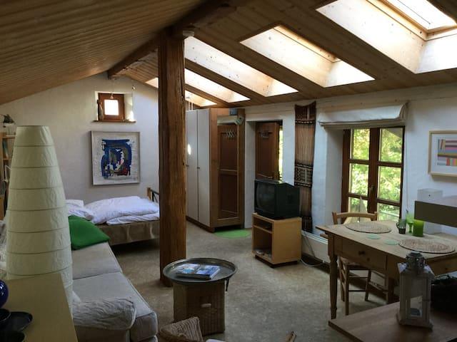 Lichtdurchflutete Ferienwohnung mit großen Dachfenstern