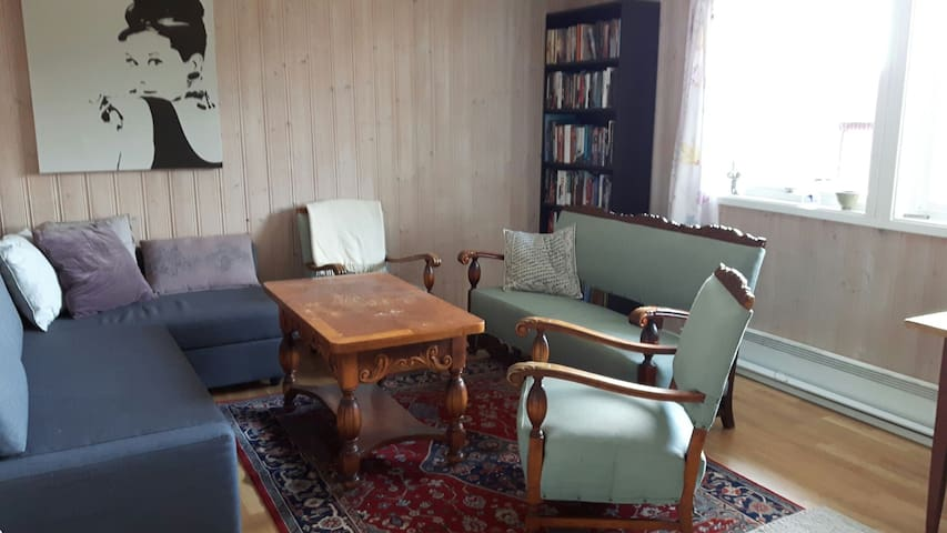 Cozy room in quiet area - Lillehammer - Talo