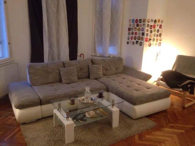 Luxury room for 2 in classic Vienna - เวียนนา - อพาร์ทเมนท์