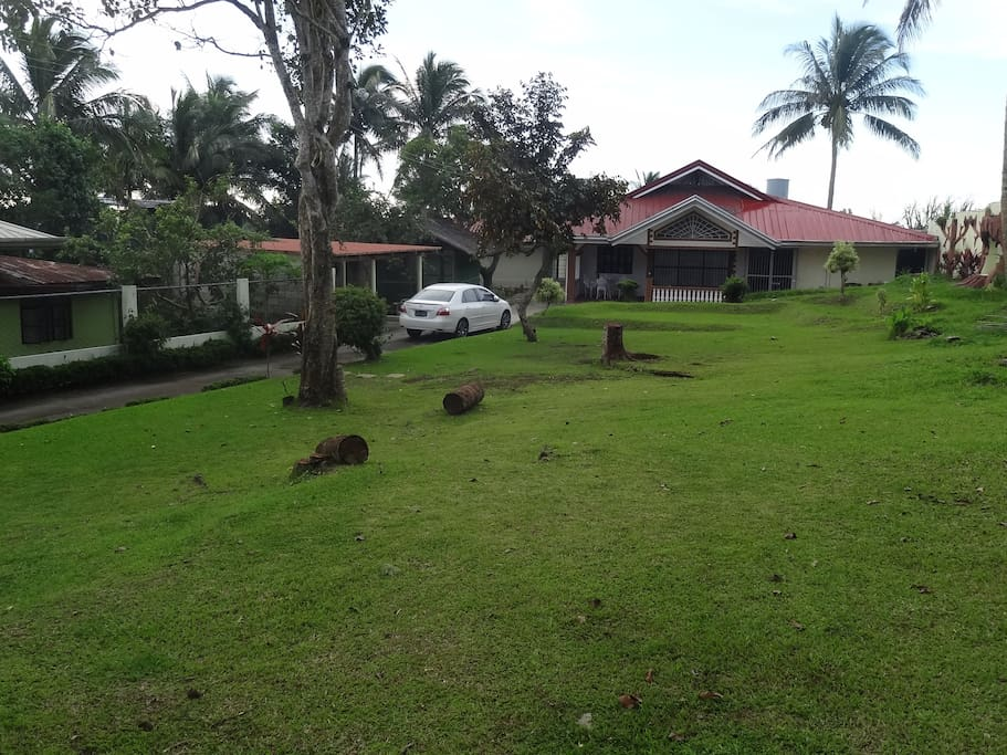 House Perspective with Garden Landscape