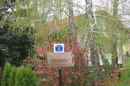 Kuca za odmor-Renata - Vrdnik