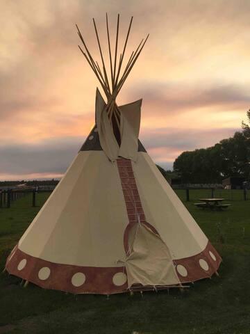 20' Tipi on Bison and Yak Ranch (sleeps 6)