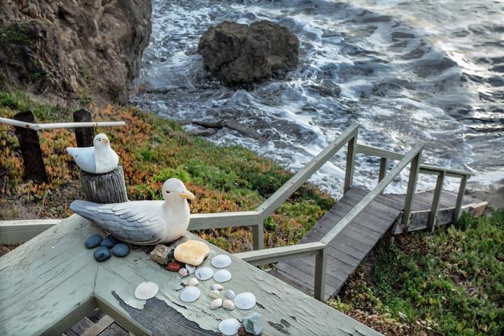 Oceanfront & beach access & surfing monthly rental