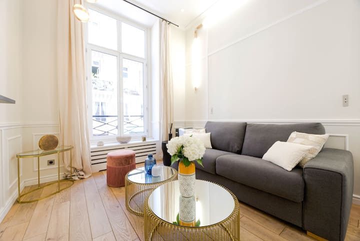 Cosy flat facing the louvre museum with AC