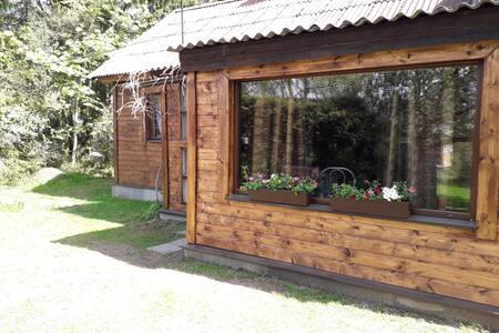 Дом на берегу Чудском озере.