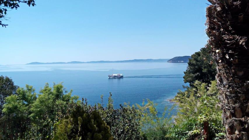 Sea View Apartment - Neos Marmaras - Leilighet