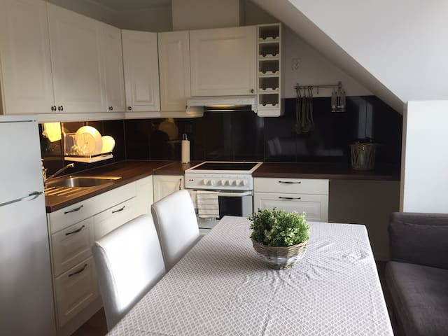 Charming pent house close to city
