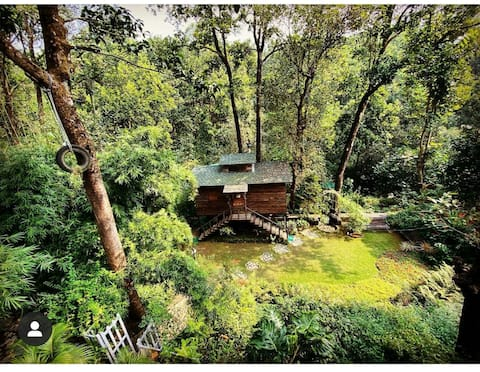Tree House amidst forest @ Kailasa Woods