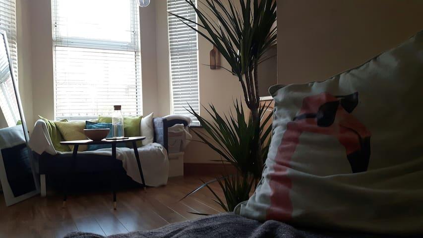 Croke park modern studio apartment - Dublin