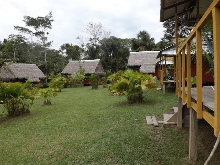 Savia Lodge & Jungle Excursions