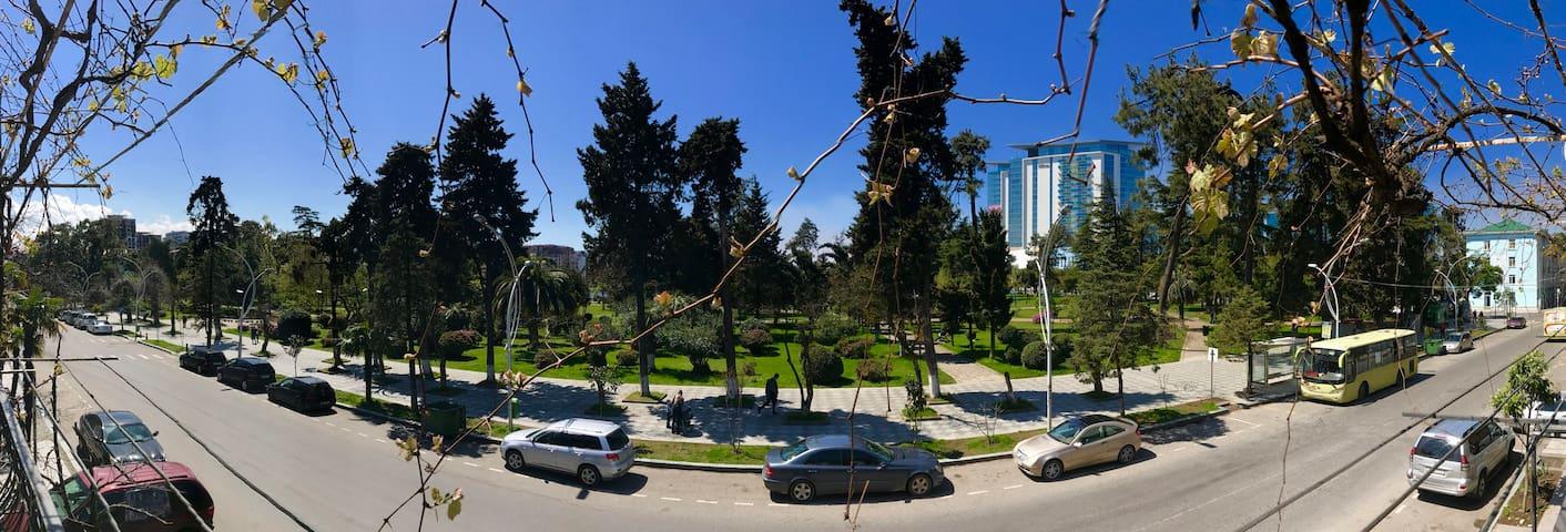 Дом с прекрасным видом в г. Batumi  (room1)