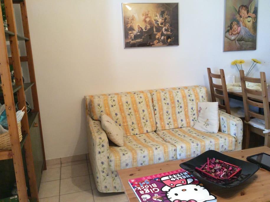 The living room  (1es floor)