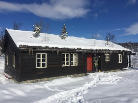 Mountain lodge with 11 beds at top of Norway