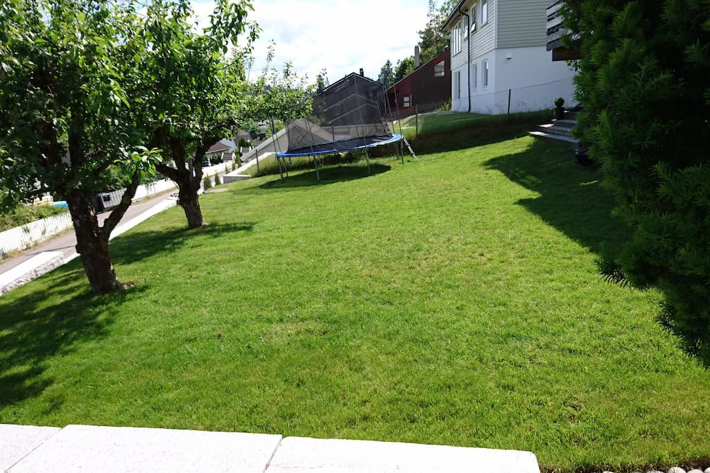 A nice lawn for playing