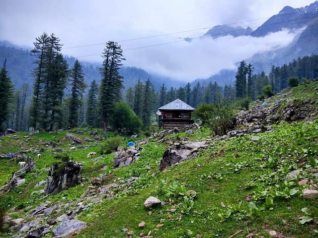 Adventure travel&Stay above Tosh, Himachal Pradesh