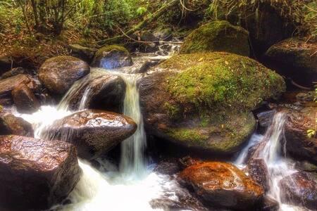 Cabana com Cachoeira Particular!